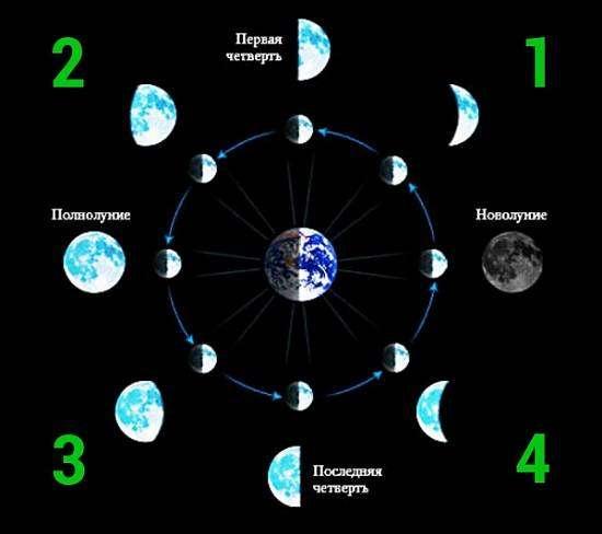 Як фаза Місяця впливає на продажу [дослідження]