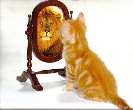Чому ваша самооцінка не збігається з тим, що думають про вас інші люди