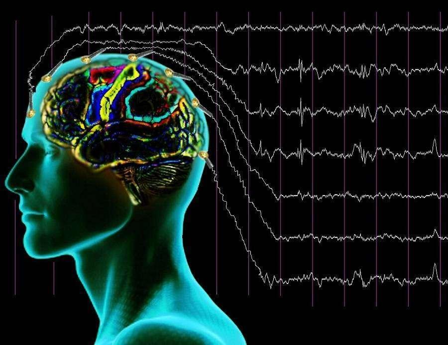 Нейромаркетинг, або Як заволодіти мозком покупця